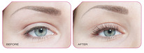 Lash Lift keemiline koolutamise koolitus + Lash Lift Kit